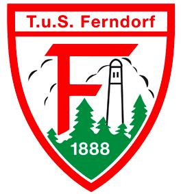 TuS Ferndorf spielt gegen den TV Emsdetten vor 350 Zuschauern